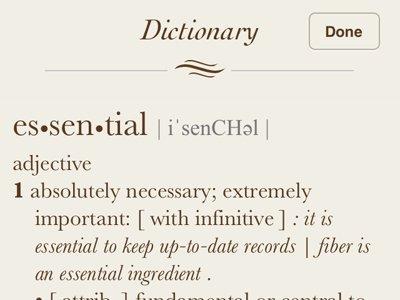 I really miss my dictionary